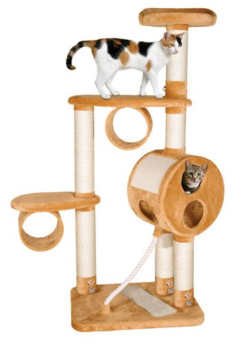 besoin d 39 un grand arbre chat pour votre gros chat. Black Bedroom Furniture Sets. Home Design Ideas