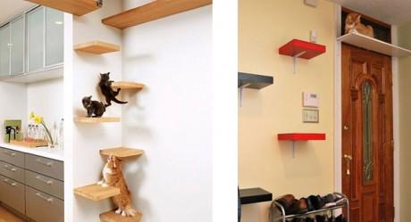 Infos pratiques sur les arbres chat - Arbre a chat original pas cher ...